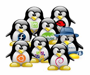 установить Linux на виртуальную машину