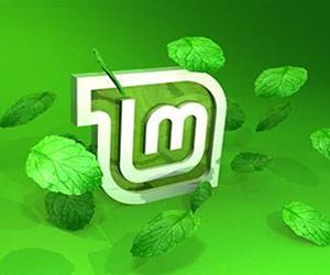 Установить Linux Mint