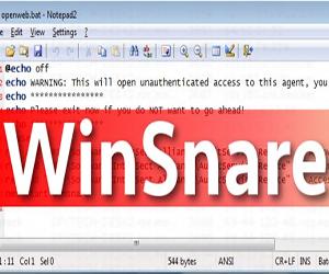 WinSnare как удалить